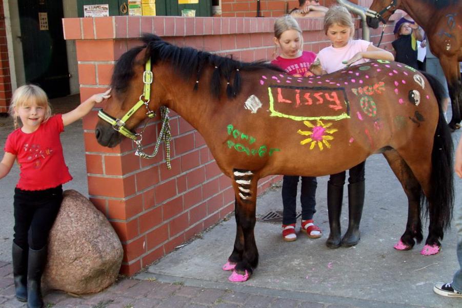 Horsepainting beim Bauernhof Kliewe Ruegen