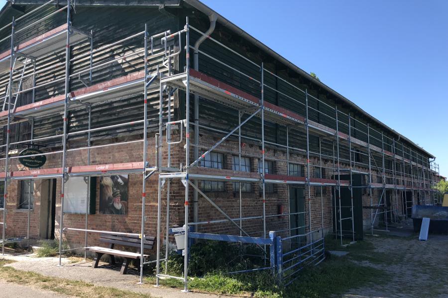 Renovierung der Haflingerzucht