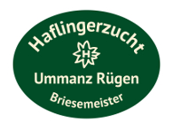 Haflingerzucht Briesemeister