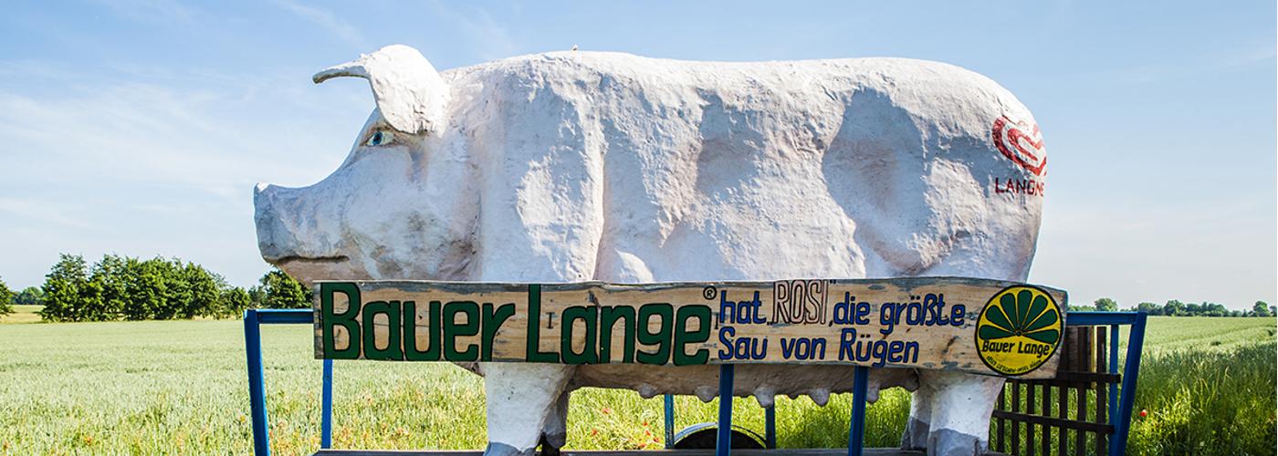 Bauer Lange Hinweisschild